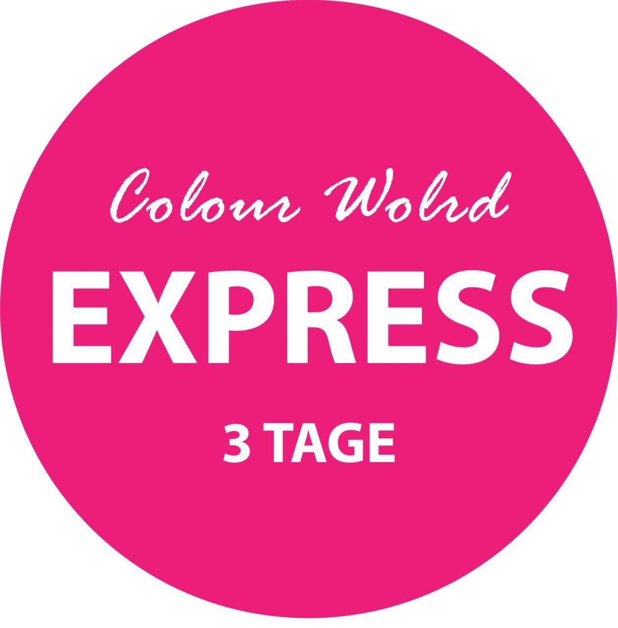 Express Färbeservice ( 3 Tage )